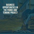 Business Opportunities in the Pande and Temane Project